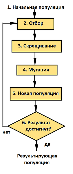 Блок схема генетического